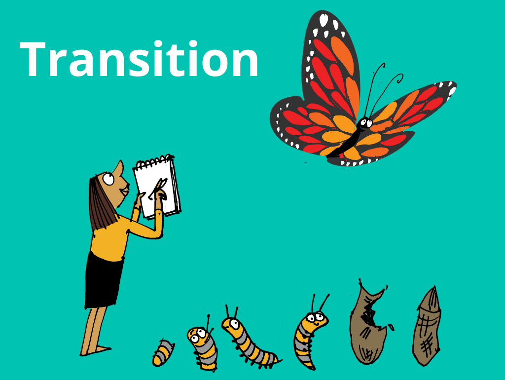 Transition Workshop for Primary Schools – Bags of Confidence