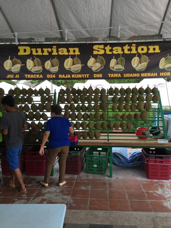 The Durians Await …
